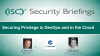 Securing Privilege in DevOps and in the Cloud