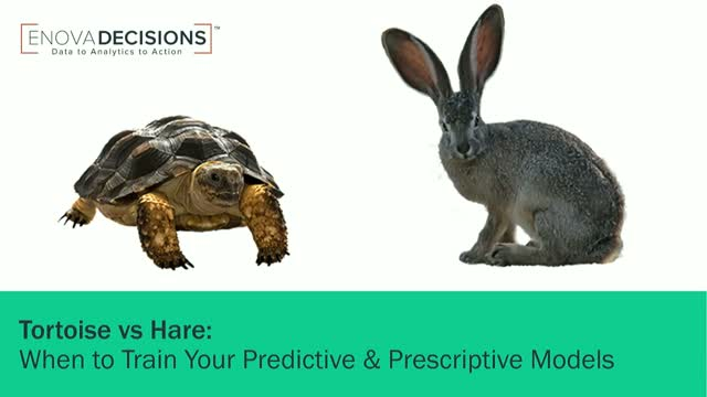 When Hare Beats Tortoise: Knowing When to Train Your Predictive Models