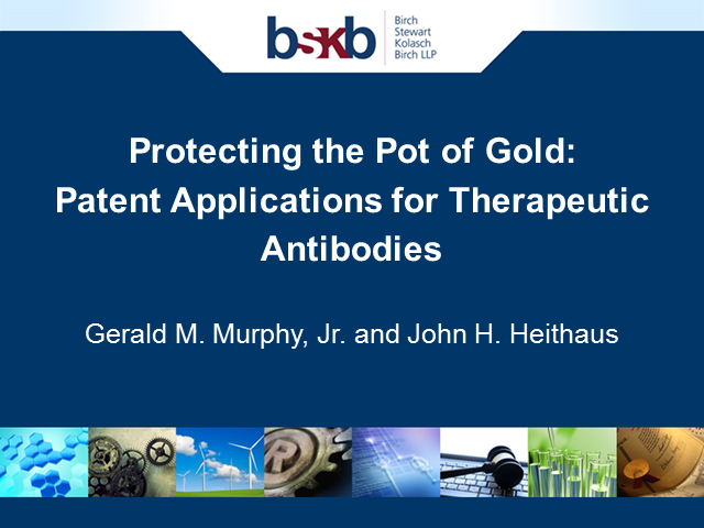 Protecting the Pot of Gold: Patent Applications for Therapeutic Antibodies
