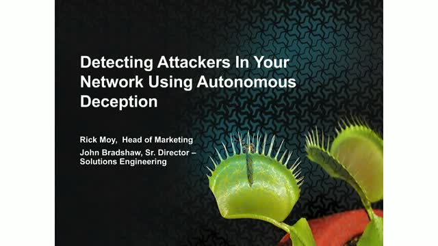 Detecting Attackers Within Your Networks Using Autonomous Deception