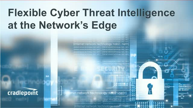 Flexible Cyber Threat Intelligence at the Network's Edge