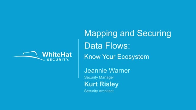 Mapping and Securing Data Flows Across Your Ecosystem