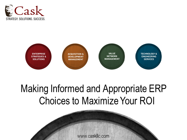 Making informed and appropriate ERP choices to maximize your ROI