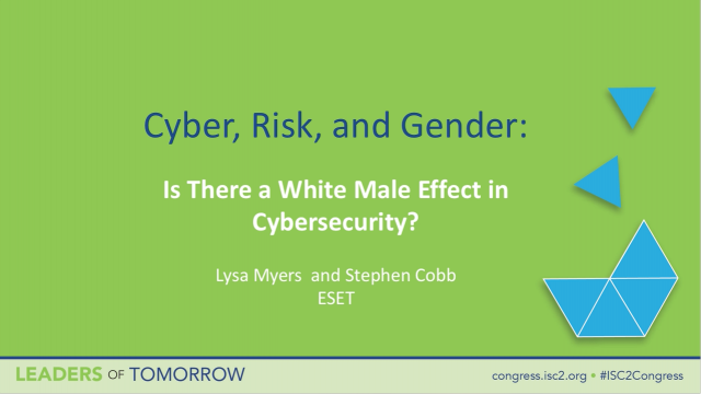 Cyber, Risk and Gender: Is There a White Male Effect in Cybersecurity?