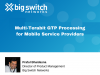 Multi-Terabit GTP Processing for Mobile Service Providers
