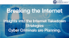Breaking the Internet - Internet Takedown Strategies Used by Cyber Criminals