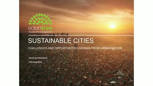 Amity Insight: Sustainable Cities