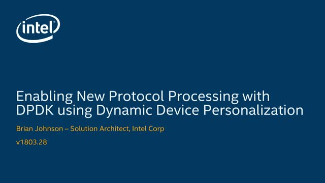 Flexible support for new protocol processing with DPDK using DDP