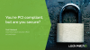 You are PCI compliant, but are you secure?