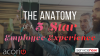The Anatomy of a 5-Star Employee Experience
