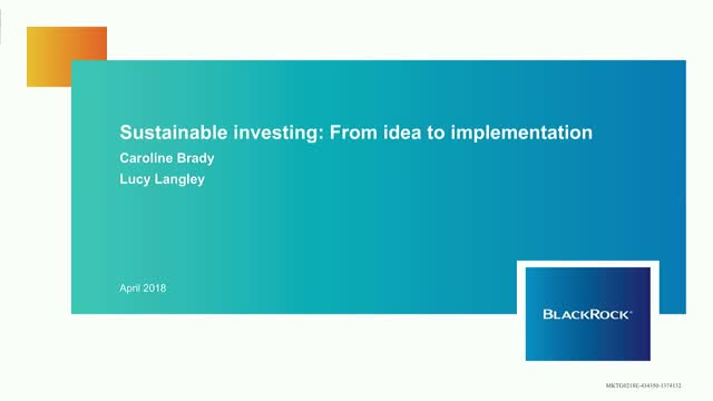 Sustainable Investing: From idea to implementation