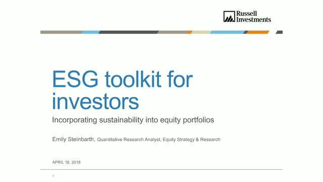 ESG Toolkit for Investors: Incorporating Sustainability into Equity Portfolios