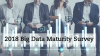 The Definitive Big Data Maturity Survey - 2018 Edition