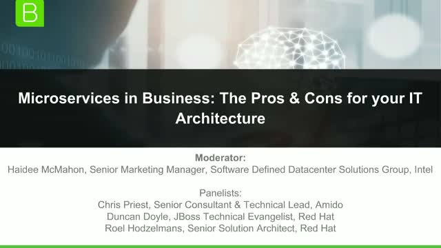 Microservices in Business: The Pros & Cons for your IT Architecture
