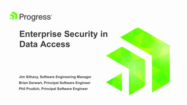 Enterprise Security in Data Access