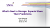 What's Next in Storage: Analysts and Experts Share their Predictions