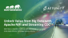 Unlock Value from Big Data with Apache NiFi and Streaming CDC