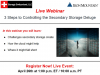 3 Steps to Controlling the Secondary Storage Deluge