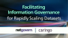 Facilitating Information Governance for Rapidly Scaling Datasets