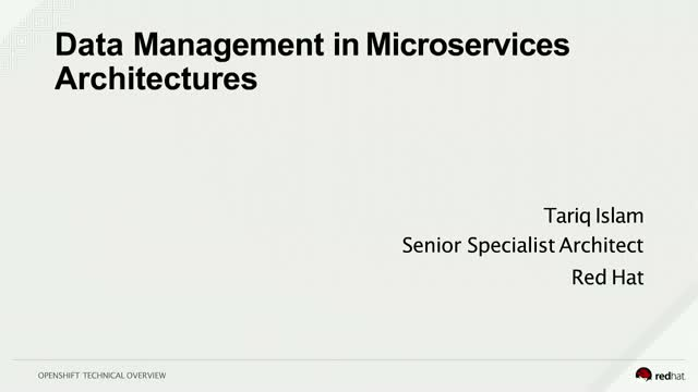 Government data management in a microservices architecture