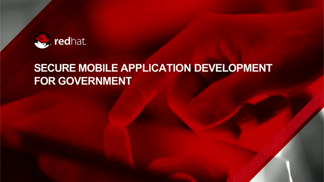 Secure mobile application development for government