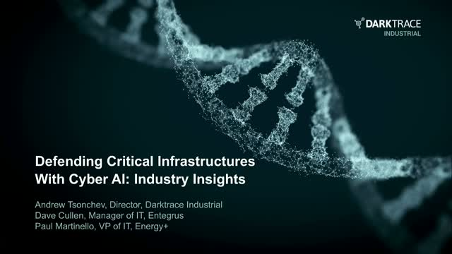 Defending Critical Infrastructure with Cyber AI: Industry Insights