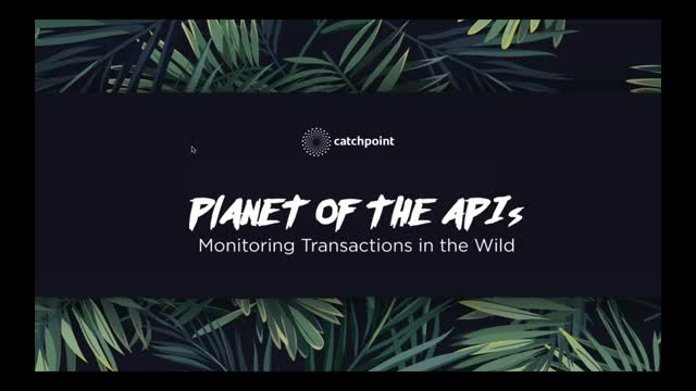 Planet of the APIs: Monitoring Transactions in the Wild