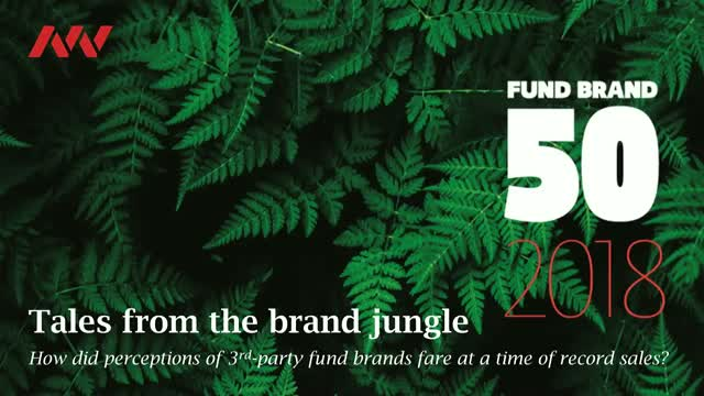 Tales from the brand jungle