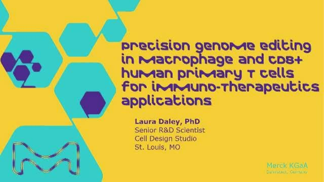 Precision genome editing in macrophage and CD8+ human primary T cells for immuno