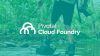 Crossing the Value Stream: Improving Development with Pivotal Cloud Foundry