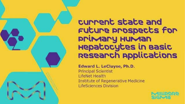Current State and Future Prospects for Primary Human  Hepatocytes in Basic Resea