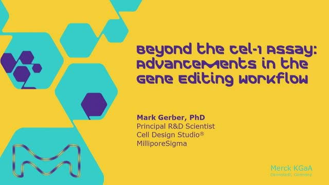 Beyond the Cel-1 Assay:  Advancements in the Gene Editing Workflow