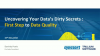 Uncovering your data's dirty secrets: first step to better data quality!