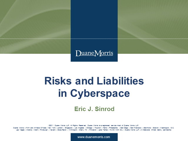 Risks and Liabilities in Cyberspace