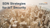 SDN Strategies for IoT Security