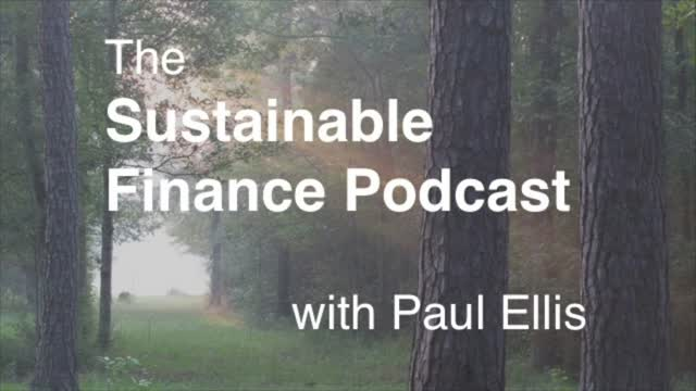 Paul Ellis Podcast Ep 1: SDG #17
