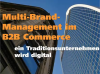 Multi-Brand-Management im B2B Commerce – ein Traditionsunternehmen wird digital