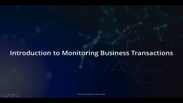 Introduction to Monitoring Business Transactions