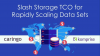 Slash Storage TCO for Rapidly Scaling Data Sets