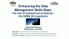 Enhancing the Data Management Skills Base: The role of professional mentoring –