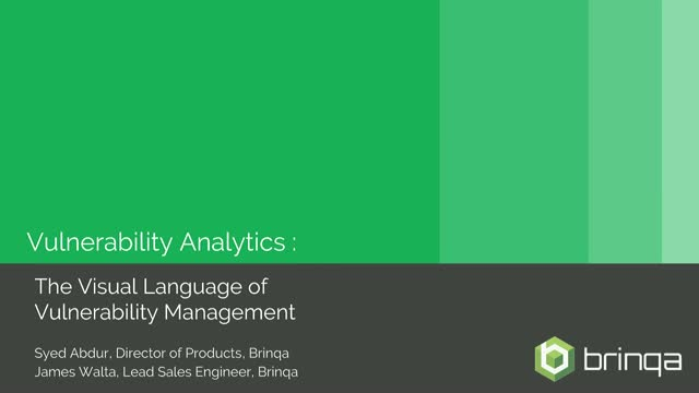 Vulnerability Analytics : The Visual Language of Vulnerability Management