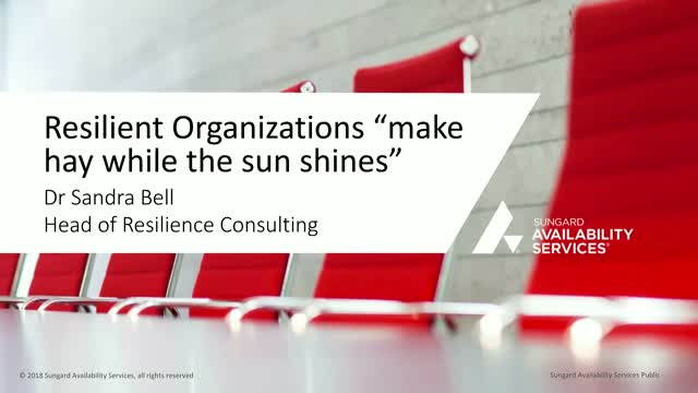 "Resilient Organizations ""make hay while the sun shines"""