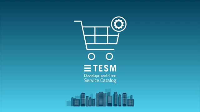 TESM's development-free Service Catalog