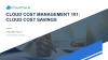 Cloud Cost Management 101: Cloud Cost Savings