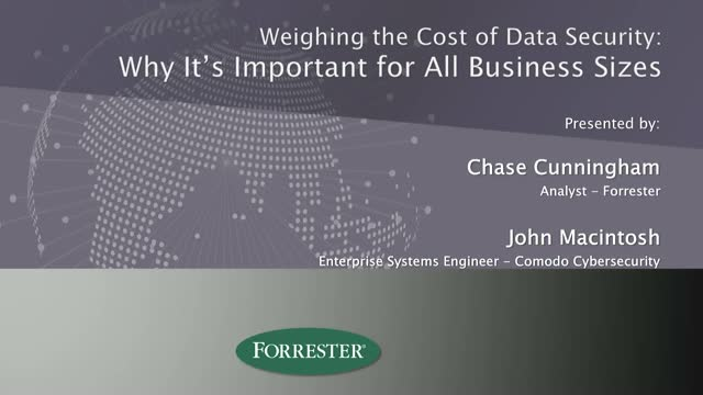 Weighing the Cost of Data Security: Why It's Important for All Business Sizes