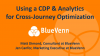 Using a CDP & Analytics for Cross-Journey Optimization