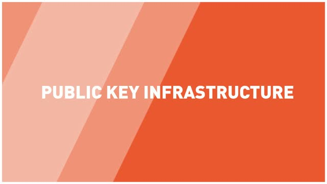 What is PKI (Public Key Infrastructure)?