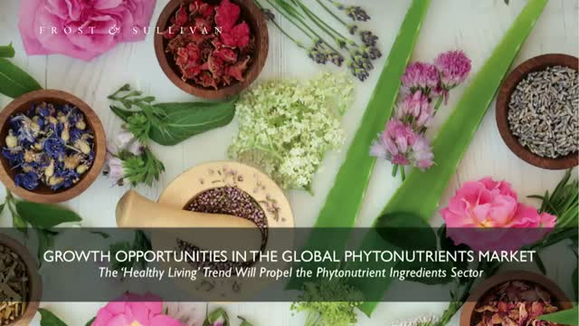 Growth Opportunities in the Global Phytonutrients Market