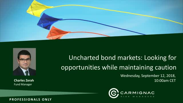 Uncharted Bond Markets: Looking For Opportunities While Maintaining Caution