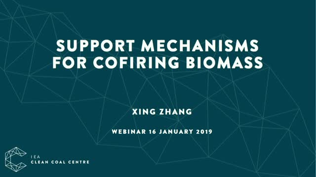 Support mechanisms for cofiring biomass